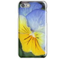 blue and yellow pansie iPhone Case/Skin