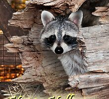 Halloween Raccoon by Wild For Ever