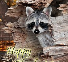 Thanksgiving Raccoon by Wild For Ever