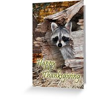 Thanksgiving Raccoon Greeting Card