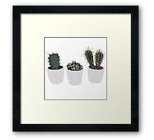 three lil cacti Framed Print