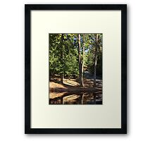 Stillness of Life Framed Print