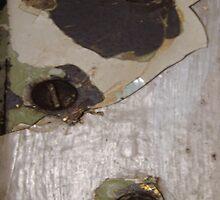 CRACKED (Damaged) by leethompson