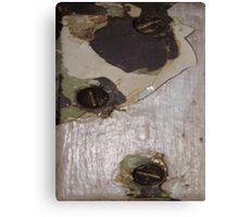 CRACKED (Damaged) Canvas Print