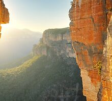 Between Cliffs, Blue Mountains, New South Wales, Australia by Michael Boniwell