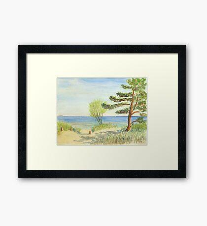 Am Ostseestrand auf der Düne Framed Print