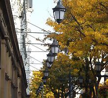 Classic Lamps, Autumn Colors, Market Street, Philadelphia, Pennsylvania by lenspiro