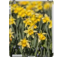 Field of Daffodil Flowers iPad Case/Skin