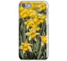Field of Daffodil Flowers iPhone Case/Skin