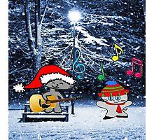 Cats Sing Christmas Carols Photographic Print