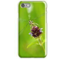 Flying Beast iPhone Case/Skin