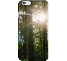 Sunlight Forest iPhone Case/Skin
