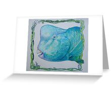 Bump Headed Parrot Fish Head Study Greeting Card