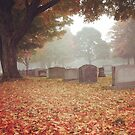 Autumn in the Cemetery by storiedthreads