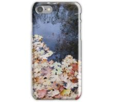 Leaves fallen into water iPhone Case/Skin