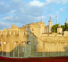 Blood Filled Moat - Tower of London by InterestingImag