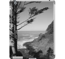 Devils Churn iPad Case/Skin