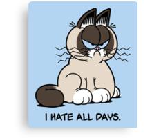 Always Grumpy Canvas Print