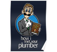How I Met Your Plumber Poster