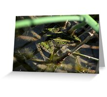 Leopard Frog #1 Greeting Card