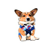 cute dog voting 2016 presidential elections funny Photographic Print