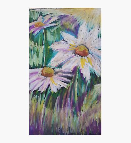 Oil Daisies Photographic Print