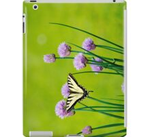 Sugar and Spice Butterfly Art iPad Case/Skin