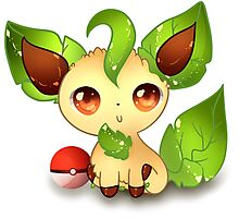 Leafeon .:Sunny Day:.  Photographic Print