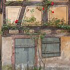 Old Door and Window by Yair Karelic