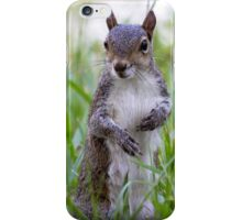 Encounter with a Squirrel iPhone Case/Skin