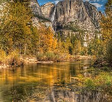 Iconic Reflections by James Hoffman