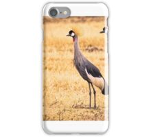 Crown Crane Couple iPhone Case/Skin