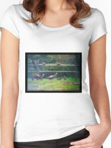 Wild Turkeys on a Fence Women's Fitted Scoop T-Shirt