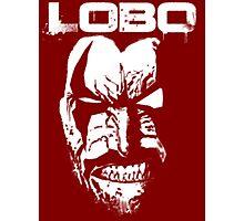 Lobo Photographic Print