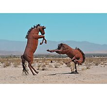 Rusted Rodeo Photographic Print
