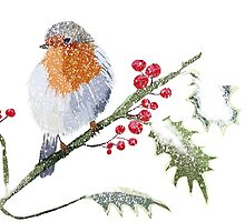 Winter Robin Art by Karen Harding