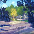 Shady Pools (Macdonald river NSW)  by Cary McAulay