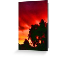 Weeping Tree Silhouette against the Sunset 1 Greeting Card