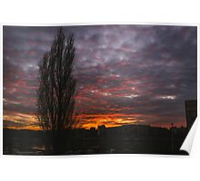 Burning Sky and Tree Silhouette Poster