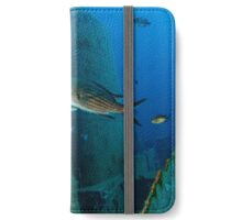 Diver on the Wreck iPhone Wallet/Case/Skin
