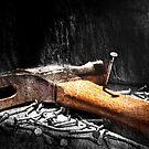 The Nail's Revenge  by Alex Preiss
