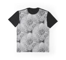 Fluffy White Dandelion In Black And White Graphic T-Shirt