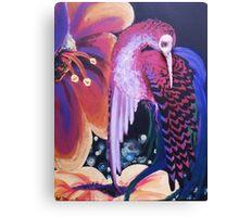 Hummingbird of a dream Canvas Print