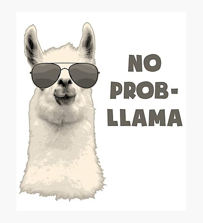 No Problem Llama Photographic Print