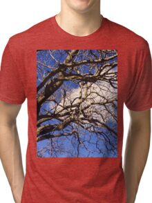 Seen Against the Blue Skies of Spring Tri-blend T-Shirt