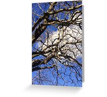 Seen Against the Blue Skies of Spring Greeting Card