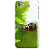 Small Patterned Bug iPhone Case/Skin