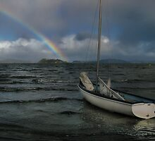 Storm Over Port Nicholson by Peter Kurdulija