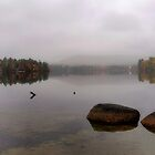 Bear Pond - Autumn Reflection in the Morning Fog by T.J. Martin