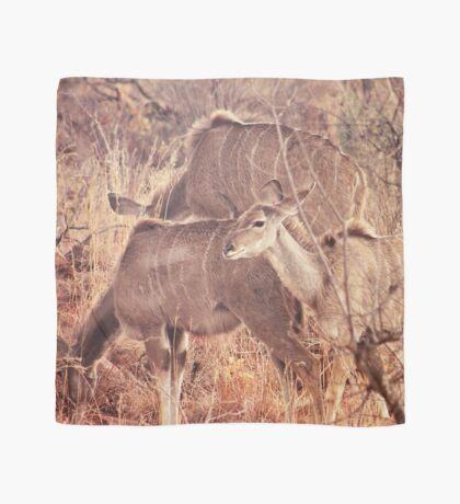 African Wildlife Kudu Decor Scarf